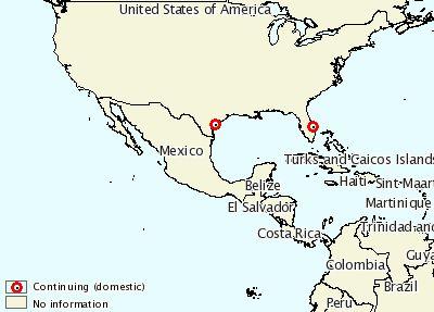 Di AS, Dua Tambak Udang Resirkulasi Terserang IHHNV