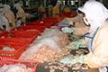 Jaga Pasar Lama, Buka Pasar Baru