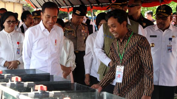 Jokowi Tinjau Budidaya Clownfish Sistem Mini Resirkulasi di Ambon