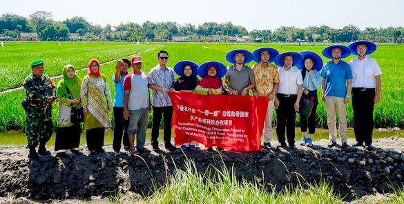 Delegasi China Kunjungi Percontohan Minapadi di Sukoharjo