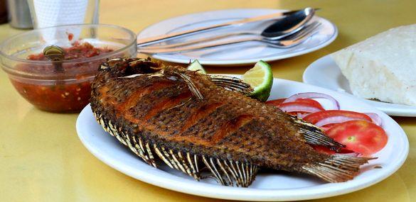 Belanja Ikan dari Rumah Selama Darurat Wabah