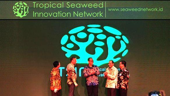 Jejaring Virtual untuk Inovasi Rumput Laut Tropis