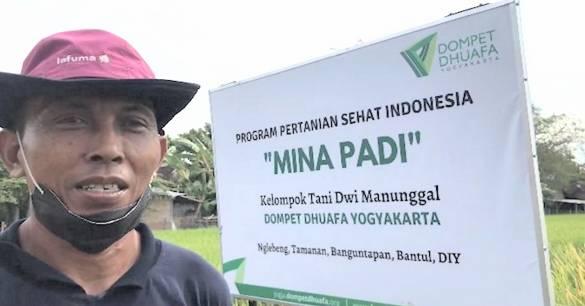 Dompet Dhuafa Bina Petani Kembangkan Mina Padi