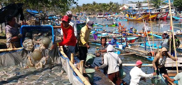 Pemerintah Rencanakan Uang Pensiun untuk Nelayan